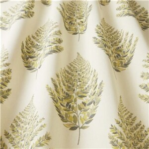 FROND FENNEL