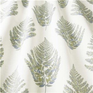 FROND OLIVE